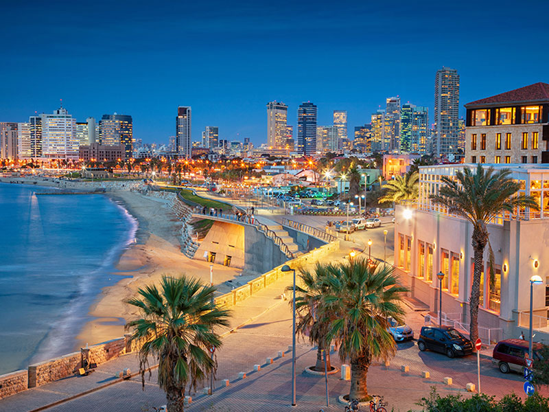 AOMT's Comprehensive Introduction Course  <br><b>July 1-4, 2019<br>Tel Aviv, Israel</b>